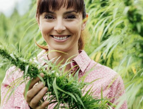 "What Is a ""Hot"" Hemp Crop?"