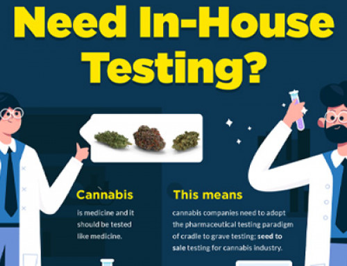 Why do Cannabis Businesses need in-house testing?