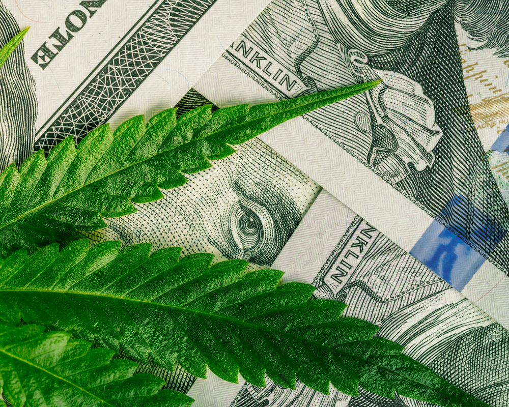 Marijuana business concept. Cannabis leaf and Dollar banknotes. marijuana drug sales. revenue and profits in the growing medical cannabis.