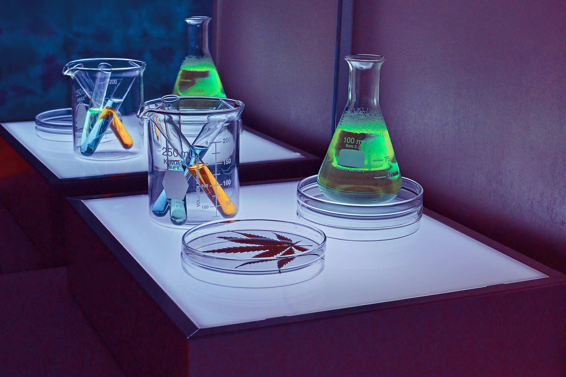 Neon colored test tubes around a cannabis leaf